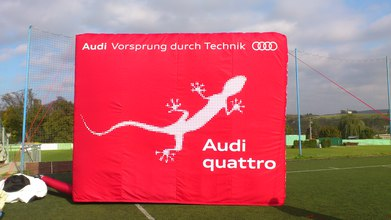 Sublimační tisk Audi